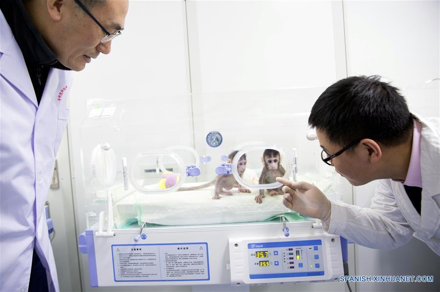 (1)CHINA-JIANGSU-CIENCIA-CLONACION