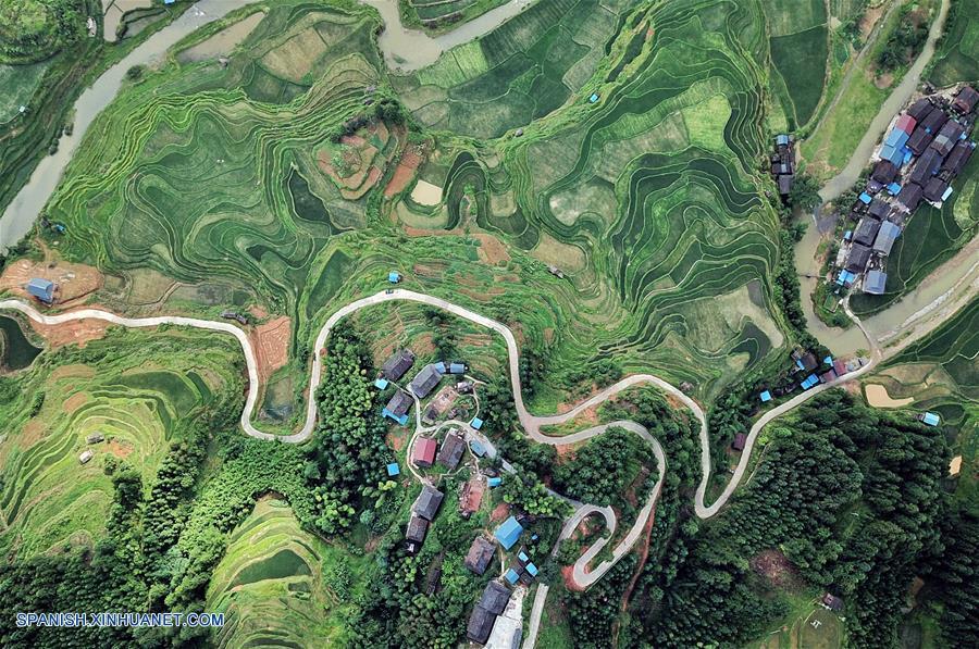 Guizhou Vista Aérea Del Paisaje Del Campo De Terrazas De