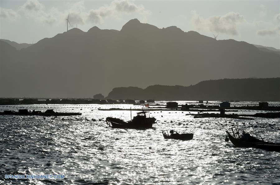 CHINA-FUJIAN-TIFON-PROTOCOLO DE RESPUESTA