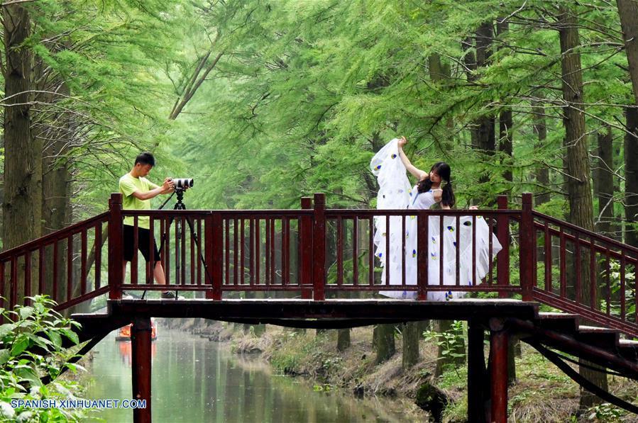 (2)CHINA-JIANGSU-BOSQUE-TURISMO