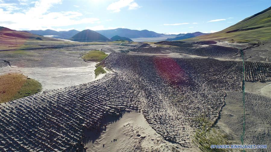 CHINA-XIGAZE-CONSTRUCCION DE LA CIVILIZACION ECOLOGICA-SERIE