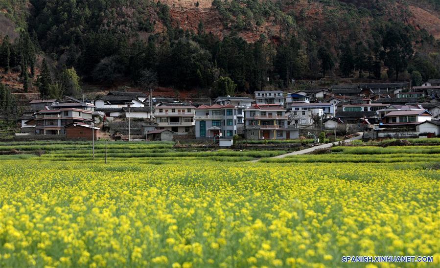 CHINA-SICHUAN-CONSTRUCCION DE LA CIVILIZACION ECOLOGICA-SERIE