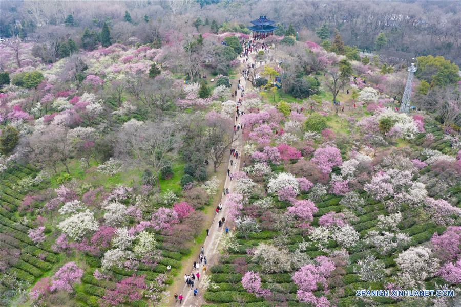 CHINA-JIANGSU-PRIMAVERA-FLORES