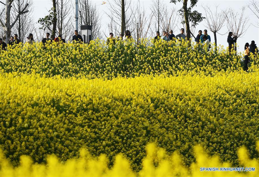 CHINA-CHONGQING-PRIMAVERA-FLORES