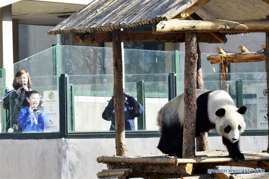 (4)CHINA-TIANJIN-PANDA GIGANTE