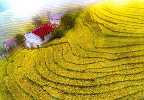 Shaanxi: Vista aérea de los campos de terraza